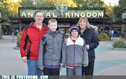 family,feudal system,kingdom,photobomb,portrait,unfortunate,zoo