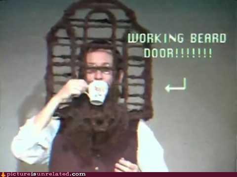 beard birds cage facial hair really wtf wtf - 4333537792