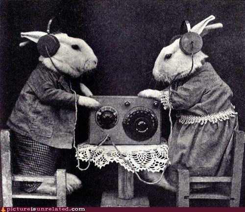 animals black and white costume rabbits spies vintage wtf
