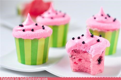 cupcakes epicute frosting pink watermelon - 4333629696