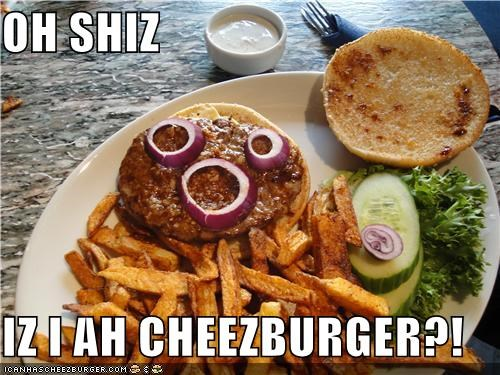 Cheezburger Image 4333701632