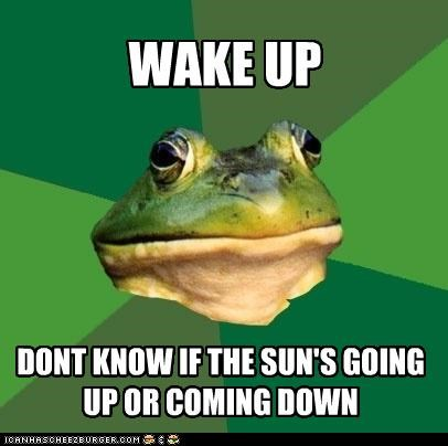 dawn,foul bachelor frog,twilight,what time is it