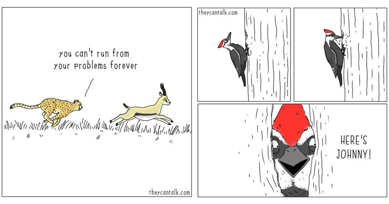 Funny animal comics, snakes, birds, cats, dogs, animals, web comics, they can talk.