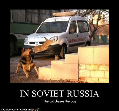 IN SOVIET RUSSIA The cat chases the dog