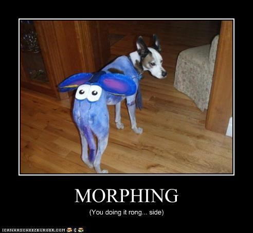 MORPHING (You doing it rong... side)