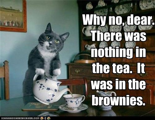 brownies,caption,captioned,cat,denial,drugged,explanation,pouring,tea,teacup,teapot