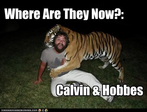 actor calvin and hobbes celeb funny Hall of Fame zack galifianakis - 4340038656