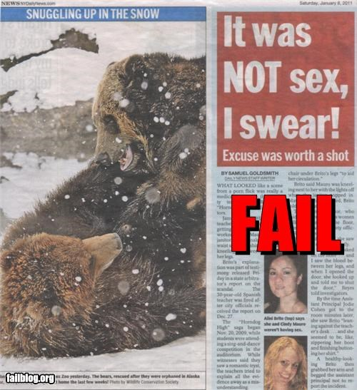 bears failboat headline juxtaposition Probably bad News sex - 4340481792