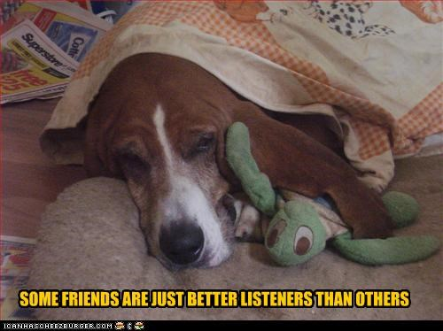 basset hound,comparison,cuddling,ear,friends,friendship,listeners,stuffed animal,turtle