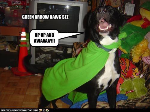 GREEN ARROW DAWG SEZ UP UP AND AWAAAAY!!