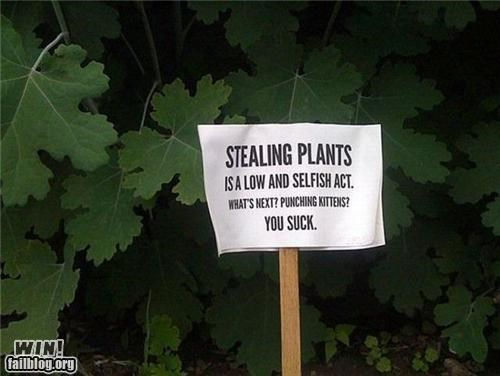 notes signs theft warning - 4343094784