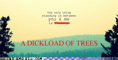 emolulz,how much is a dickload,love,scene,standing,trees,us