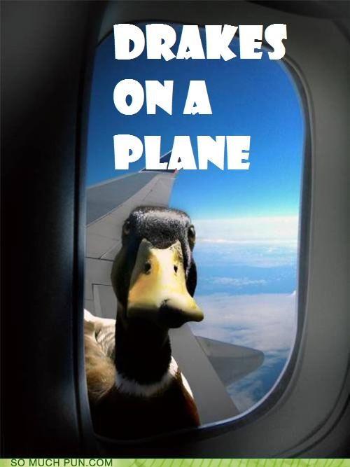 drakes duck flying kenan thompson literalism Movie plane rhyme rhyming Samuel L Jackson snakes snakes on a plane title - 4343843584