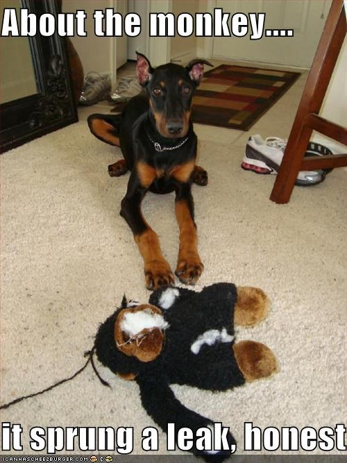 about that doberman pinscher excuse honest leak monkey stuffed animal - 4344650240