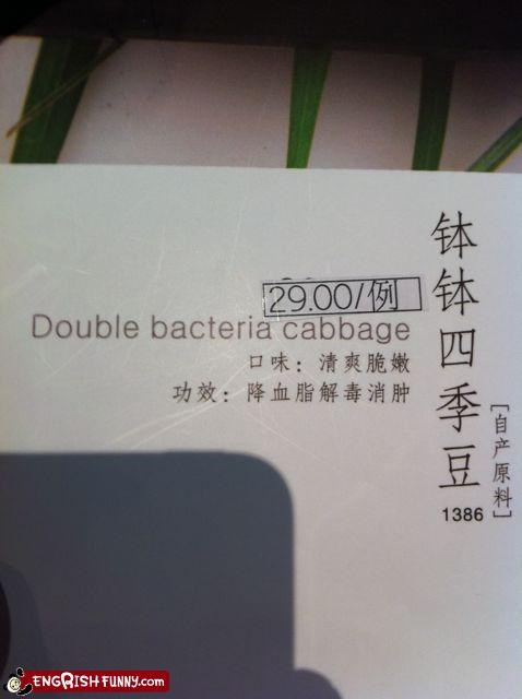 bacteria cabbage food