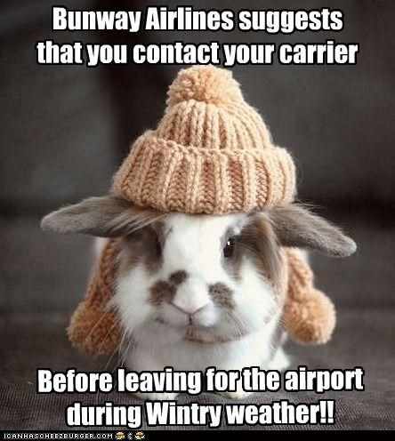 Bunway Airlines suggests that you contact your carrier Before leaving for the airport during Wintry weather!!