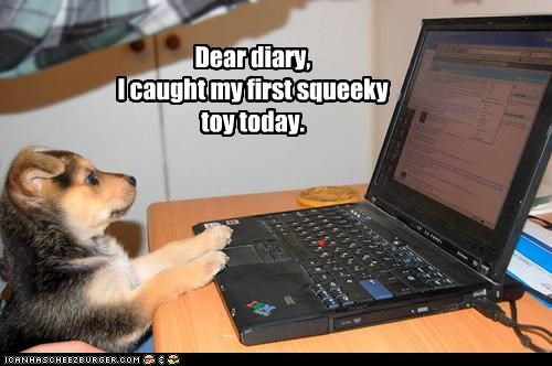 caught computer dear diary entry first Hall of Fame puppy squeaky toy today toy typing whatbreed - 4345091584