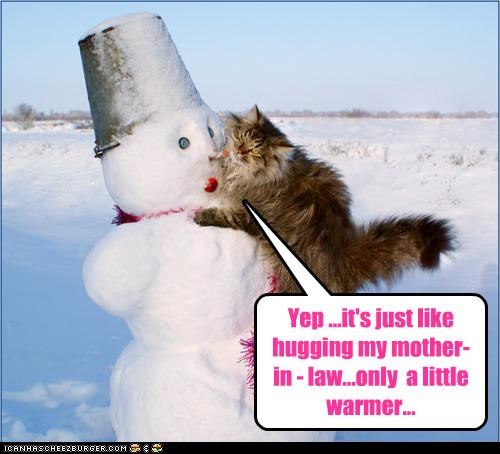 caption,captioned,cat,cold,comparison,hugging,insult,irony,mother in law,resemblance,snow,snowman,warmth
