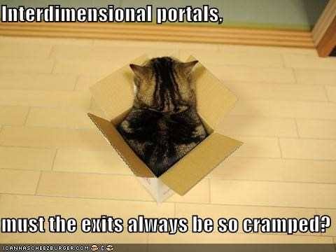 box caption captioned cat cramped dimension dimensions discontent exit exiting interdimensional Portal question - 4345484032