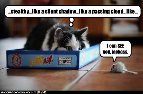 box caption captioned cat FAIL Hall of Fame ignorant mouse prey see sneaking stalking stuffed animal - 4345565696
