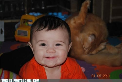 animals,Babies,cat,Caturday,cute,kids,photobomb
