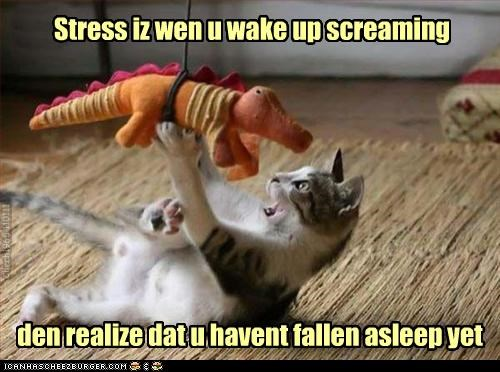 asleep caption captioned cat contradiction dangling definition dinosaur explanation falling freaked out hanging not yet realization screaming stress stuffed animal wake up waking up - 4345702144