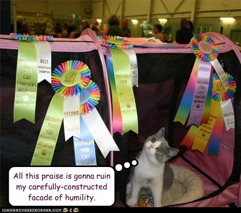 afraid caption captioned careful cat constructed construction contest facade fearful humility planned praise ribbons ruin ruined winner