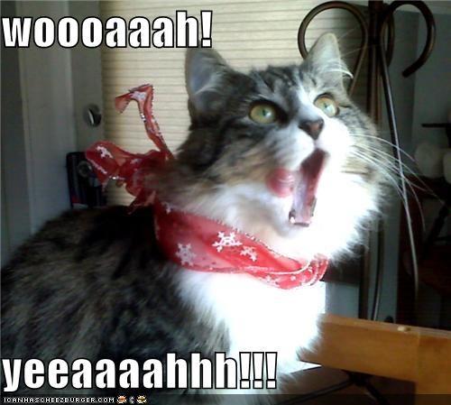 woooaaah!   yeeaaaahhh!!!