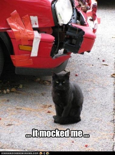 caption captioned car cat damage explanation Hall of Fame justification mocked mocking punishment totaled wrecked - 4346595584