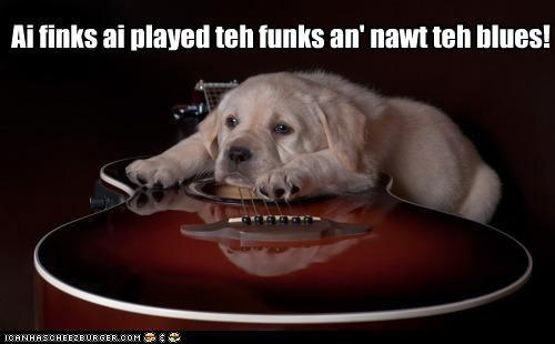 Ai finks ai played teh funks an' nawt teh blues!
