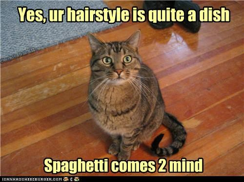 Yes, ur hairstyle is quite a dish Spaghetti comes 2 mind Chech1965 110111