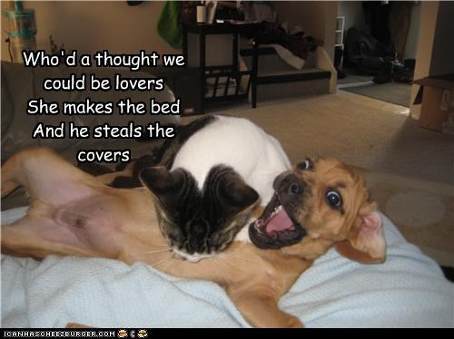 Who'd a thought we could be lovers She makes the bed And he steals the covers