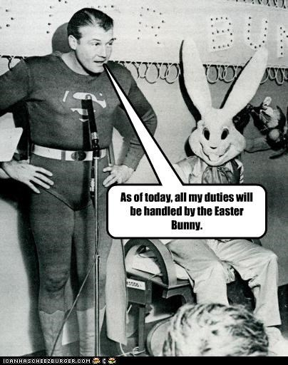 costume,Easter Bunny,funny,Photo,superman