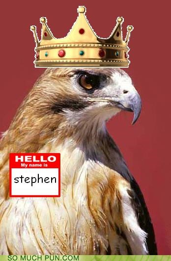 crown,hawk,king,literalism,physicist,physics,relative,relativity,stephen hawking,theoretical physics