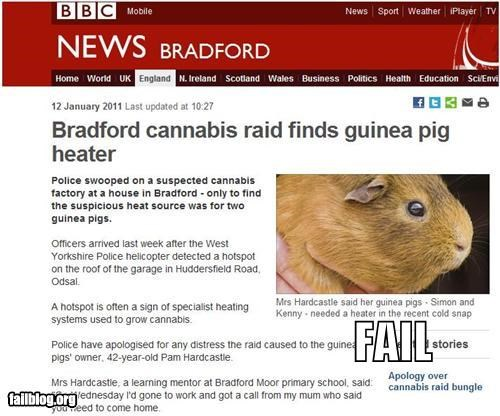 animals,drugs,failboat,g rated,guinea pigs,heaters,pets,police,Probably bad News,raid
