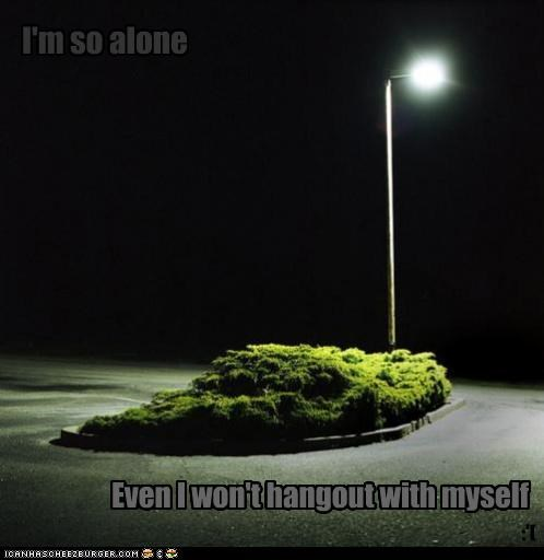 forever alone,hanging out,lights,loneliness,trees
