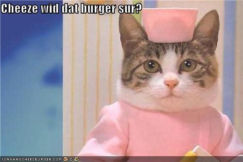 Cheezburger Image 4348549888