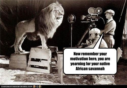 Now remember your motivation here, you are yearning for your native African savannah