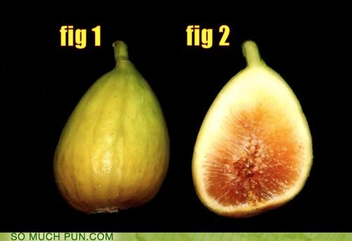 abbreviation,fig,figs,figure,figures,rhyming,significant figures