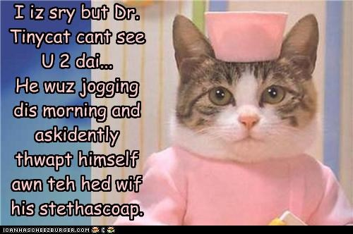 accident,caption,captioned,cat,costume,denial,dr tinycat,dressed up,explanation,impossible,injury,nurse,patient,sorry