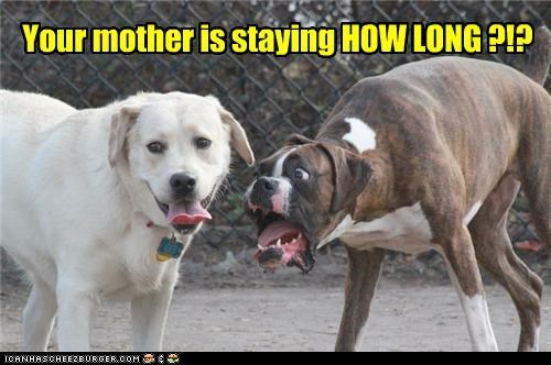 Your mother is staying HOW LONG ?!?