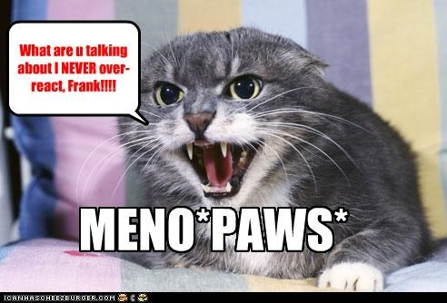 angry caption captioned cat denial meno menopause overreacting paws prefix pun screaming shouting upset - 4350349568