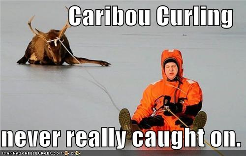 caribou curling ice rescue rope sports winter