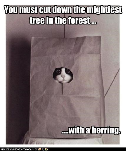 You must cut down the mightiest tree in the forest ... ....with a herring.