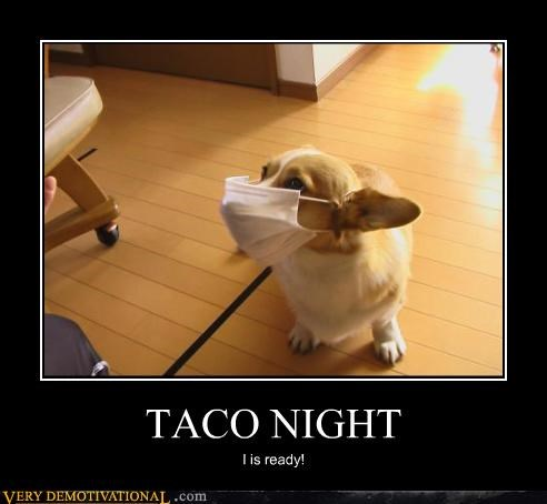 TACO NIGHT I is ready!