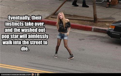 Eventually, their instincts take over, and the washed out pop star will aimlessly walk into the street to die.