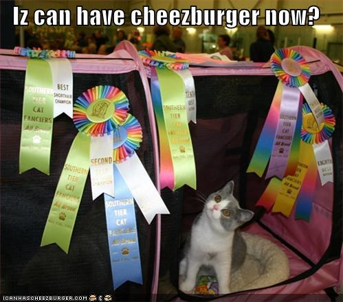 Cheezburger Image 4353176832