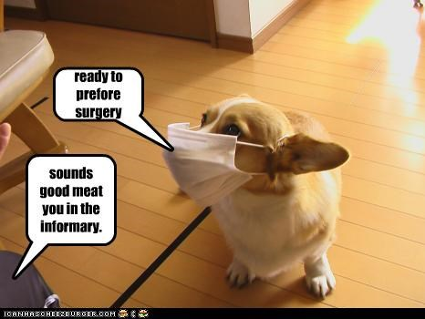 ready to prefore surgery sounds good meat you in the informary.
