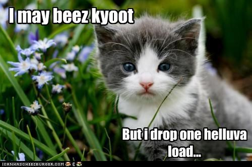 I may beez kyoot But i drop one helluva load...