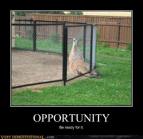 OPPORTUNITY Be ready for it.